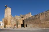 Seville Gate Carmona